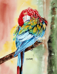 Artist Maria Barry Greeting Card Greenwing Macaw