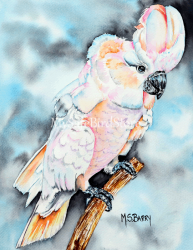 Artist Maria Barry Greeting Card Moluccan Cockatoo