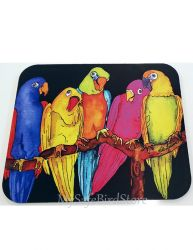 Girl Talk Parrots Computer MousePad