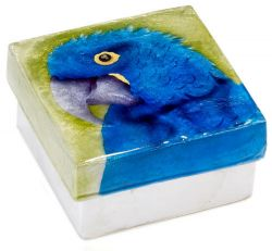 Capiz Shell Hyacinth Macaw Box