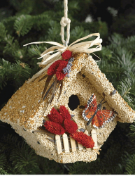 Mr. Bird Wren Casita Edible Bird House