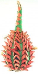 Planet Pleasures Pineapple Foraging Toy X-Large