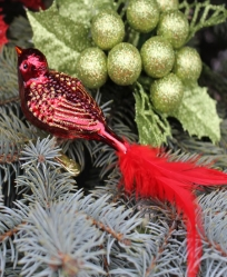 Old World Christmas Red Songbird Glass  Ornament
