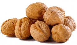 Walnuts in the Shell Per Pound
